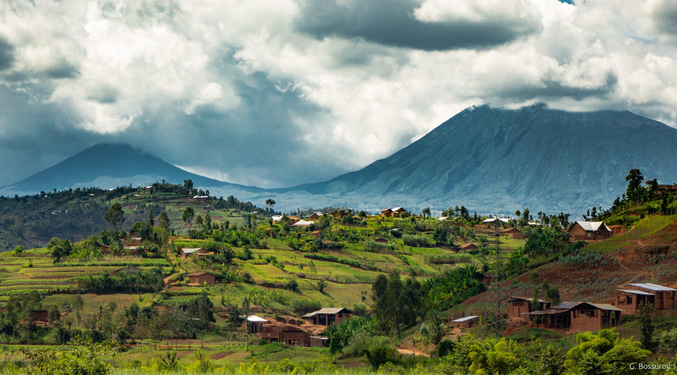 Génocide des Tutsiau Rwanda : 25 ans après…